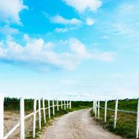 砂浜の小道の白い柵