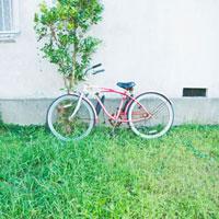 赤白にペイントされたサーフサイクル 01143045650| 写真素材・ストックフォト・画像・イラスト素材|アマナイメージズ