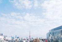 東京タワーが見える街並みの遠景