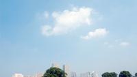 ビルと木立の遠景と青空に浮かぶ白い雲