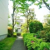 集合住宅の緑