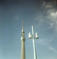 吾妻箸から見た街路灯と東京スカイツリー
