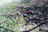 桜の葉影に置かれた子供自転車