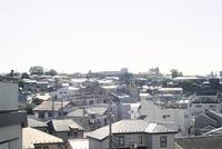 逆光でまぶしく眺める住宅地 01143046446| 写真素材・ストックフォト・画像・イラスト素材|アマナイメージズ