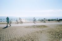 小春日和の湘南茅ヶ崎海岸