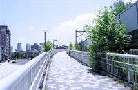 東急旧鉄道空き地に整備された公園へのスロープ