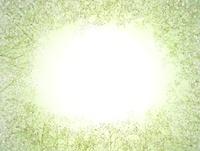 かすみ草のバックグラウンドイメージ