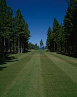ゴルフ場 レイクタホ アメリカ 01167005414| 写真素材・ストックフォト・画像・イラスト素材|アマナイメージズ