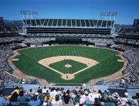 野球観戦 01184090282| 写真素材・ストックフォト・画像・イラスト素材|アマナイメージズ