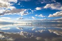 鏡張りのウユニ塩湖 01184090754| 写真素材・ストックフォト・画像・イラスト素材|アマナイメージズ