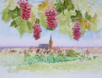 秋のアルザス地方の町並みと葡萄 フランス イラスト