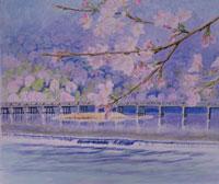 嵐山の桜と渡月橋