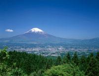 乙女岬からの富士山 御殿場市 静岡県