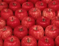 りんごのパターン(富士)