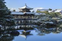 冬の平安神宮泰平閣と東神苑
