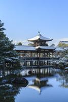 雪の平安神宮泰平閣と東神苑