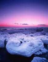 朝の流氷 標津町 北海道
