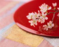 お盆の上の桜の花
