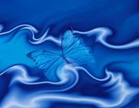 蝶のイメージ(青) CG