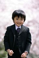 桜の木とスーツを着た男の子