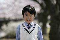 桜の木とネクタイをした男の子