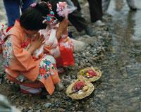 用瀬町のひな祭り 流しびなと手を合わせる着物の女の子 鳥取