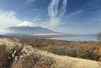 秋の富士山と山中湖 01334003547| 写真素材・ストックフォト・画像・イラスト素材|アマナイメージズ