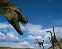 恐竜博物館の3体ティラノザウルス カルガリー カナダ 01349002233| 写真素材・ストックフォト・画像・イラスト素材|アマナイメージズ