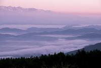 高ボッチ高原より朝焼けに染まる北アルプス連峰と雲海