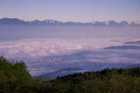 高ボッチ高原より北アルプス連峰と松本の街並みを包む雲海