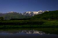 夜の白馬村水田風景に後立山連峰と星空