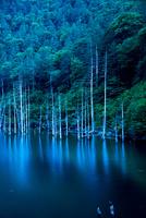 王滝村 夕闇の自然湖