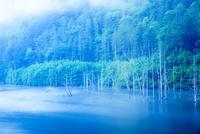 王滝村 蒸気霧流れる夜明けの自然湖