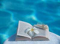 貝殻と本とプルメリア