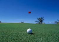 コーラルオーシャンのゴルフ場 サイパン 01413011297| 写真素材・ストックフォト・画像・イラスト素材|アマナイメージズ
