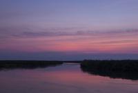 オカバンゴ川の夜明け 01431036227| 写真素材・ストックフォト・画像・イラスト素材|アマナイメージズ