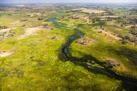 オカバンゴ・デルタの水路と沼地と中島