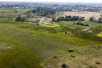 オカバンゴ・デルタの湿地と中島