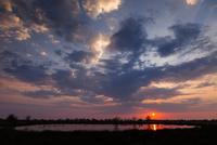 湿原の夜明け 01431036311| 写真素材・ストックフォト・画像・イラスト素材|アマナイメージズ