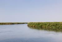 オカバンゴ川の本流パンハンドル 01431036360| 写真素材・ストックフォト・画像・イラスト素材|アマナイメージズ