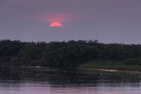 オカバンゴ川の日の出