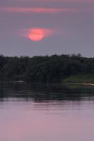 オカバンゴ川の日の出 01431036362| 写真素材・ストックフォト・画像・イラスト素材|アマナイメージズ