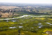 オカバンゴ・デルタの水路と沼地と中島 01431036372| 写真素材・ストックフォト・画像・イラスト素材|アマナイメージズ