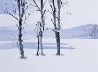 雪の湖畔 イラスト