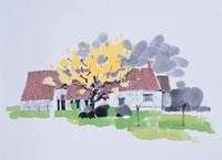 オランダの田舎 イラスト 01432000043| 写真素材・ストックフォト・画像・イラスト素材|アマナイメージズ