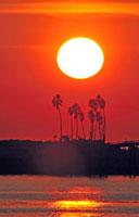 夕日とヤシの木のある島 01433043983  写真素材・ストックフォト・画像・イラスト素材 アマナイメージズ