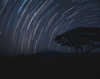 キリマンジャロ山    アンボセリNP ケニア 01488146941| 写真素材・ストックフォト・画像・イラスト素材|アマナイメージズ