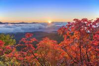 紅葉の朝の銀泉台