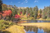 紅葉の大雪山高原沼めぐり 緑沼