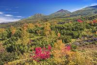 紅葉の望岳台より